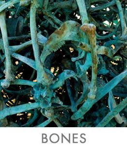 BONES-2