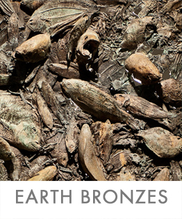 EARTH-BRONZE-2