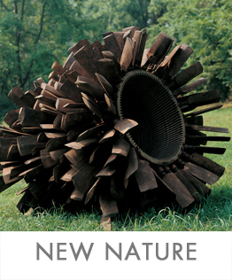 NEW-NATURE-STEEL