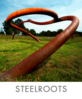 STEEL-ROOTS-ICON3