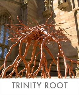 TRINITY-ROOTS-2